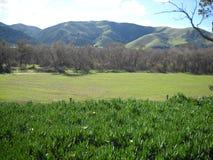 Beau paysage Image libre de droits