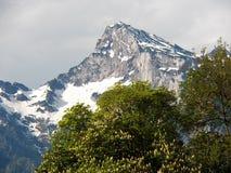 Beau paysage alpin de montagne de Salzbourg image stock