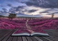 Beau paysage anglais de campagne au-dessus des champs aux WI de coucher du soleil Photographie stock