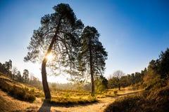 Beau paysage au lever de soleil Photographie stock libre de droits