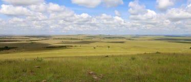 Beau paysage au masai Mara Image stock