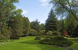 Beau paysage au printemps en parc Images stock
