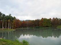 Beau paysage - automne Images libres de droits