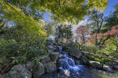 Beau paysage autour de Holland Park photos stock