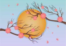 Beau paysage avec la branche et les fleurs de Sakura Photographie stock libre de droits