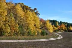 Beau paysage avec la route près de la forêt d'automne (boucle, but, Images stock