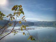 Beau paysage bleu de paysage de lac Feuilles d'arbre et d'automne dans le premier plan Lumière du soleil de matin au-dessus du la photos stock