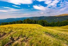 beau paysage d'été de Carpathiens Photos stock