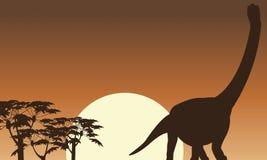 Beau paysage d'Argentinosaurus des silhouettes Photo libre de droits