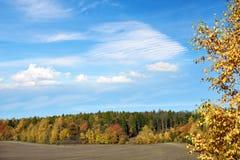 Beau paysage d'automne avec la forêt colorée Image stock