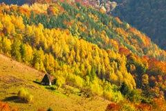 Beau paysage d'automne avec la maison traditionnelle de toit de paille dans AP Photos libres de droits