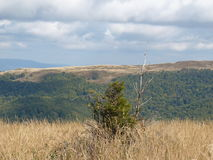 Beau paysage d'automne de montagne Bieszczady Images stock