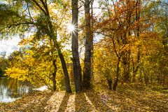 Beau paysage d'automne - vue de la berge du Siverskyi Donets Photo libre de droits