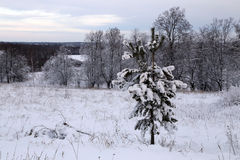 Beau paysage d'hiver au coucher du soleil Images stock