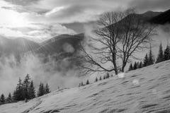 Beau paysage d'hiver avec le Soleil Levant Images libres de droits