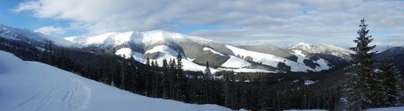 Beau paysage d'hiver dans Carpathiens Photographie stock libre de droits