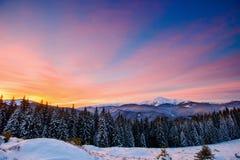 Beau paysage d'hiver dans les montagnes carpathiennes image libre de droits