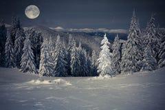 Beau paysage d'hiver dans les montagnes la nuit avec des étoiles Images stock
