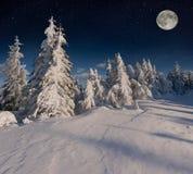 Beau paysage d'hiver de nuit dans les montagnes avec les étoiles Images stock
