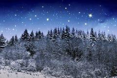 Beau paysage d'hiver de nuit dans les montagnes avec les étoiles Photos stock
