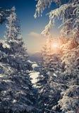 Beau paysage d'hiver en montagnes Photographie stock libre de droits