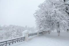 Beau paysage d'hiver pendant la tempête de neige Images stock