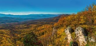 Beau paysage dans les bois de la Russie Été indien de la Saint-Martin, beaut Image libre de droits