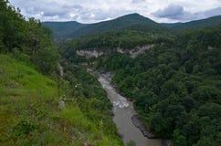 Beau paysage dans une vallée de montagne Feuillage vert o d'été images stock