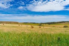 Beau paysage de campagne de champ de terres cultivables avec BAL de paille Photographie stock