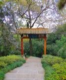 Beau paysage de campus universitaire de Wuhan images stock