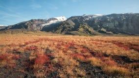 Beau paysage de chute dans les montagnes de l'Islande Images libres de droits