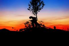 Beau paysage de coucher de soleil avec les silhouettes foncées de l'homme et de l'enfant s'asseyant sur des branches d'arbre Photos libres de droits