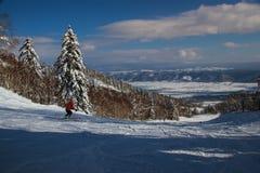 Beau paysage de Japonais d'hiver Photographie stock libre de droits