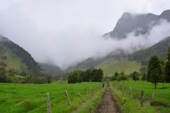 Beau paysage de la vallée de Cocora, près de à la ville coloniale de Salento, en Colombie photo libre de droits