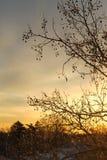 Beau paysage de lever de soleil d'hiver Image libre de droits