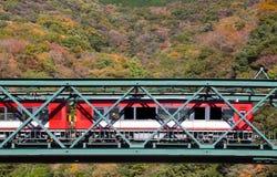 Beau paysage de montagne avec le pont et le train de chemin de fer Photo libre de droits