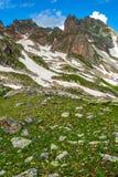 Beau paysage de montagne avec les pentes, les fleurs et la neige vertes Photo stock