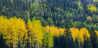 Beau paysage de montagne dans Aspen, tellurure, le Colorado photographie stock