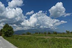 Beau paysage de nature d'été avec la clairière et la forêt vertes en montagne de Plana vers la montagne de Vitosha Photographie stock libre de droits