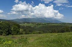 Beau paysage de nature d'été avec la clairière et la forêt vertes en montagne de Vitosha de tovard de montagne de Plana Photo libre de droits