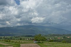 Beau paysage de nature d'été avec la clairière et la forêt vertes en montagne de Vitosha de tovard de montagne de Plana Photographie stock libre de droits