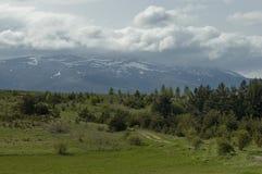Beau paysage de nature de ressort avec la clairière et la forêt vertes en montagne de Vitosha de tovard de montagne de Plana Images stock