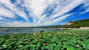Beau paysage de palais d'été Photo stock