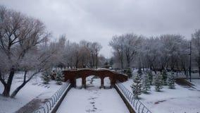 Beau paysage de parc d'hiver Photo stock