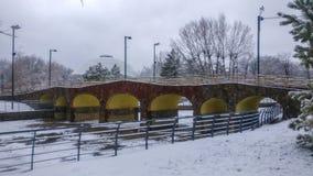 Beau paysage de parc d'hiver Photographie stock libre de droits