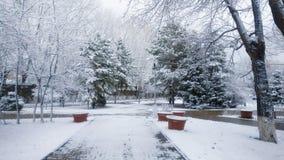Beau paysage de parc d'hiver Photo libre de droits