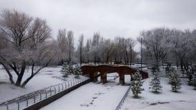 Beau paysage de parc d'hiver Images stock