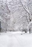 Beau paysage de parc d'hiver de Sofia, Bulgarie Photos stock