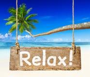 Beau paysage de plage avec le palmier images libres de droits