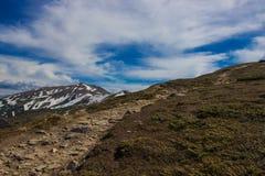 Beau paysage de ressort en montagnes de Carpathiens l'ukraine Image libre de droits